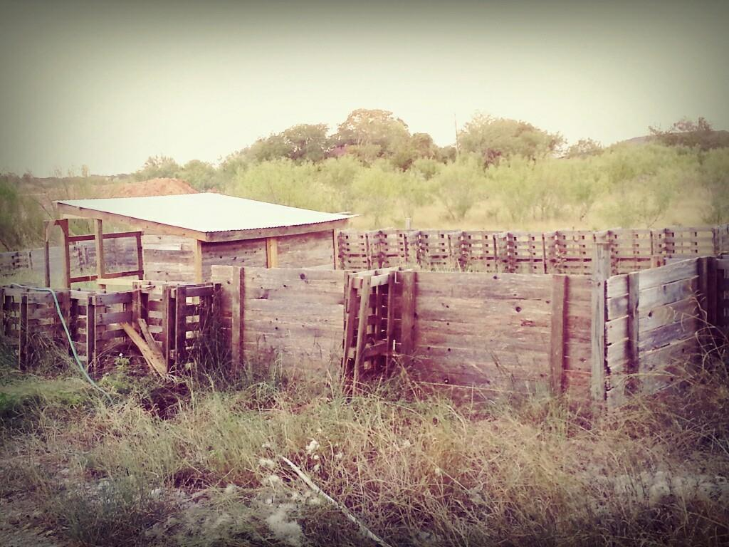 chicken coop and yard made from salvaged pallets